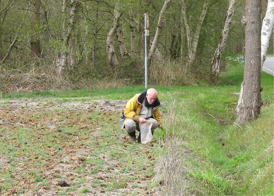 Marcel zoekt stenen langs de akker uit.
